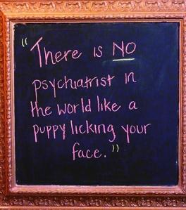Dog psychologist sign