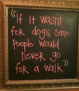 Dogs walk web