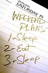 Dog's weekend plans